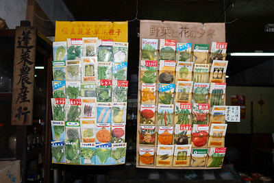 Seed display, Taipei 2019.