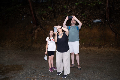 Family taking snap shots, Arashiyama Bamboo Grove, Kyoto 2019.