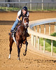 "Super Saver : EquiSport Photos' ""Super Saver"" images are intended for MEDIA & EDITORIAL USE. Please contact us at info@equisportphotos.com for media use. Contact Us Or contact the track photographer, Reed Palmer at Churchill Downs, to purchase similar images for personal use. (Churchill, http://www.churchilldownsphotostore.com/)"