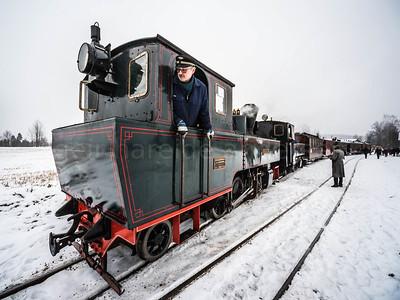 Tertitten narrow tracks train