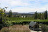 Central Otago - Felton Road Winery