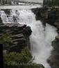 AB - Athabasca Falls 1