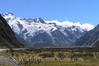 South Island - Mt Cook - Hooker Glacier