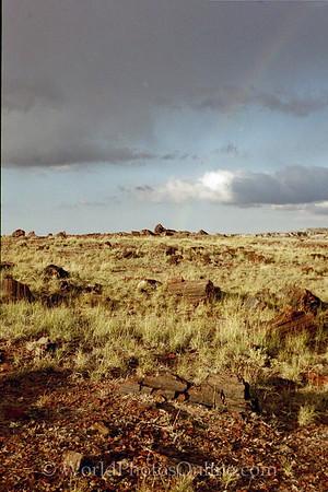 AZ - Petrified Forest - with Rainbow
