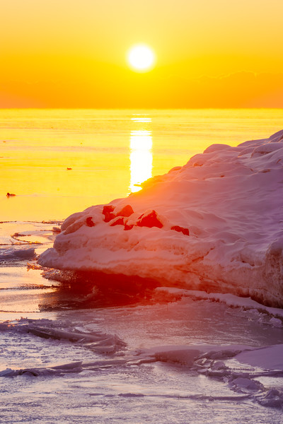 Portrait of Warming the Ice