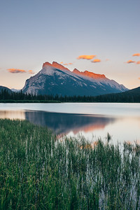 Mt. Rundle Aspenglow