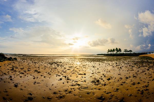 Low Tide Sunrise