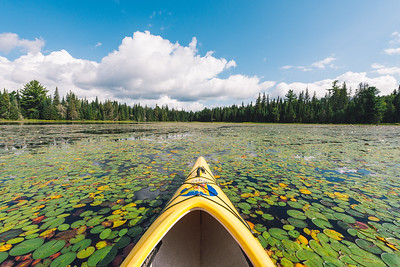 Kayak in Algonquin Park