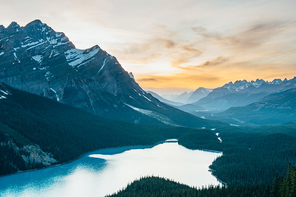 A Portrait of Peyto Lake