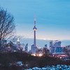 Toronto and the Shores