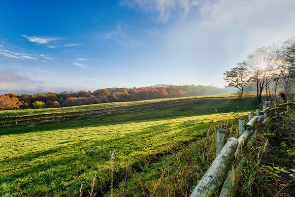A Japanese Farmland