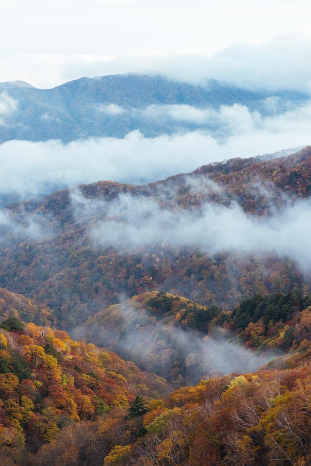 Fog in the Japanese Alps