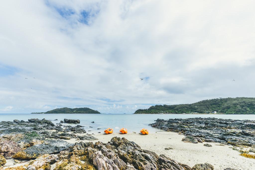 Kayak on Bird Island