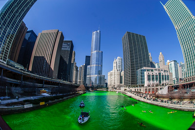 The Greening of the Chicago River, 2009 edition