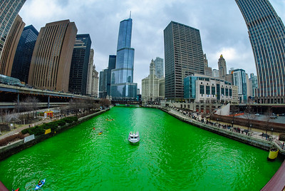 The Greening of the Chicago River, 2011 edition