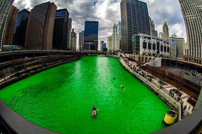 The Greening of the Chicago River, 2006 edition