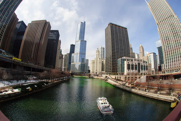 The Greening of the Chicago River, 2014 edition