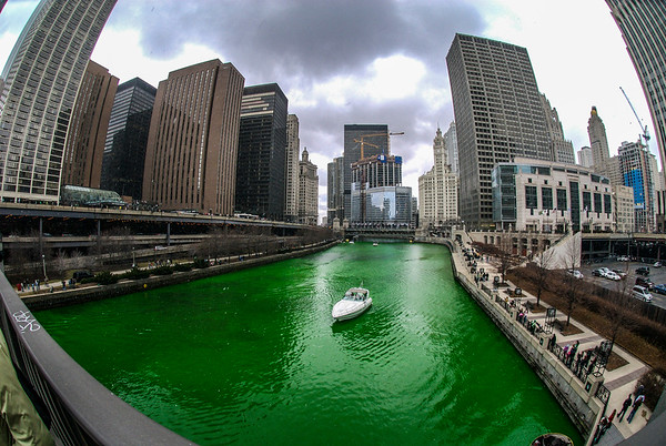 The Greening of the Chicago River, 2007 edition