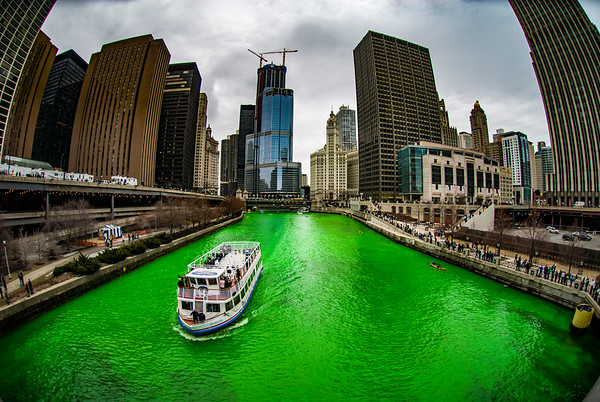 The Greening of the Chicago River, 2008 edition
