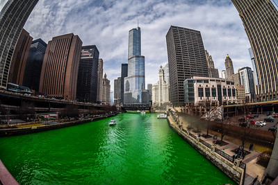 The Greening of the Chicago River, 2016 edition