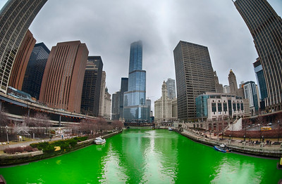The Greening of the Chicago River, 2013 edition