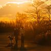 A Family Walk