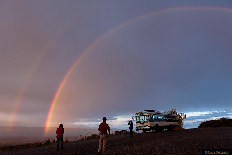 Rainbows at dawn.