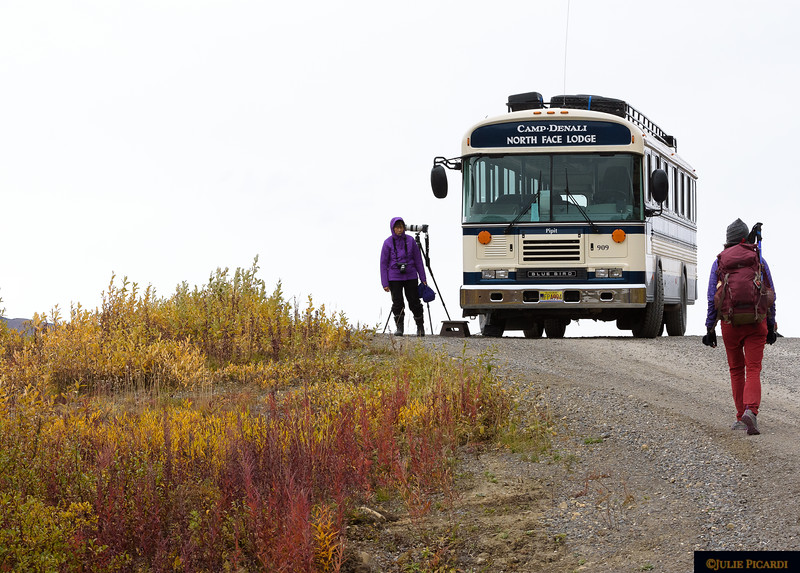 Hiking back to the bus after our latest photography jaunt.