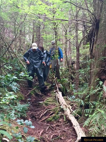Hiking to Steep Creek