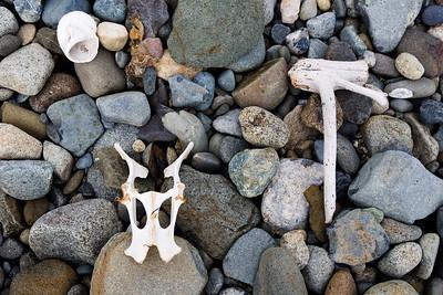 On the beach. Sandspit, QCI.