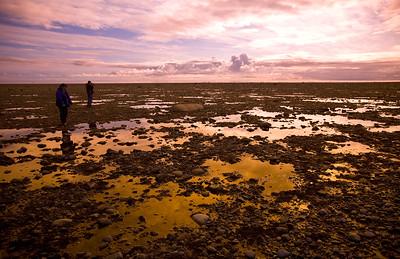 Low tide at Sandspit, Morsby Island.