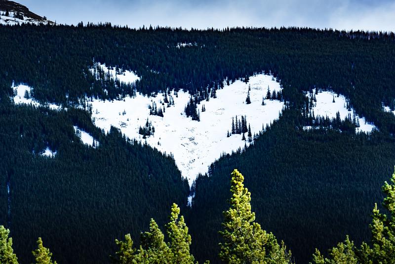 Heart Mountain?
