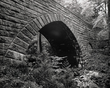 Stone Bridge Ilford Pan F+ 50 Bronica GS-1 6x7