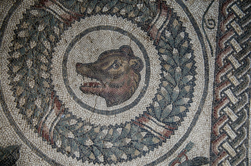 Close-up of the Mosaic Tiles