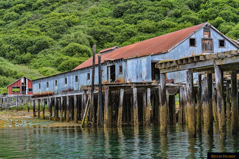 This old cannery is maybe a mile from Quartz Creek Lodge.