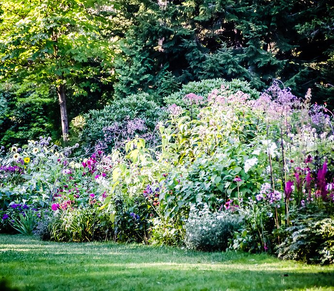 The Flowers of Thuya Gardens
