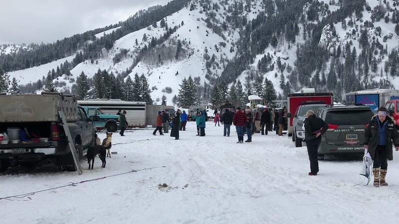 Pedigree Stage Stop Race Alpine Leg