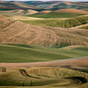 Palouse layered