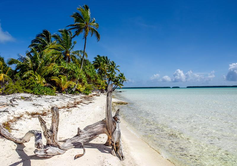 Tetiaroa : An Island Named Desire