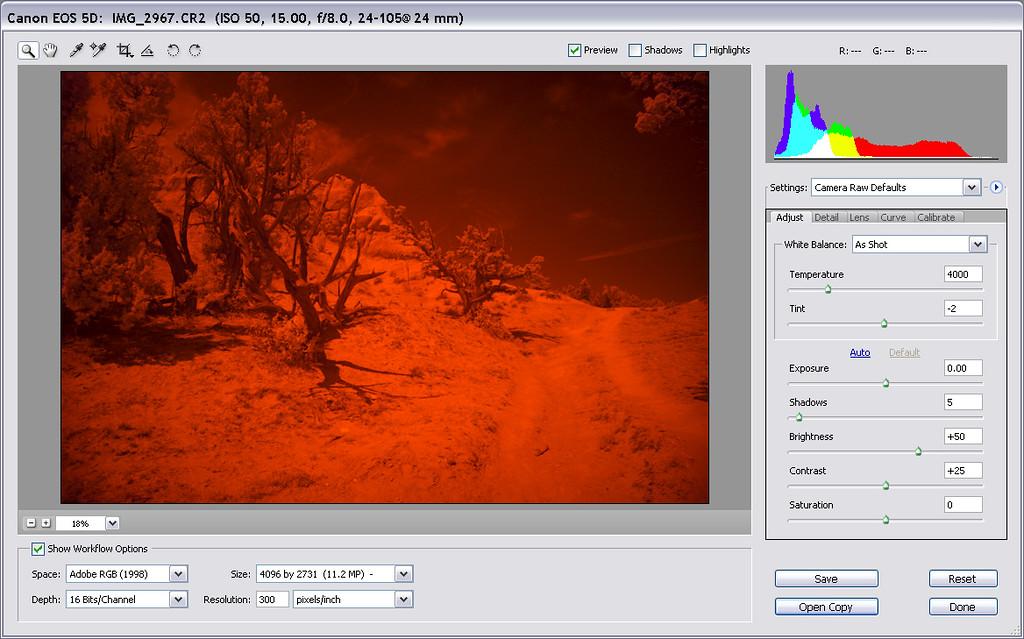 Load raw image into Adobe Camera Raw.