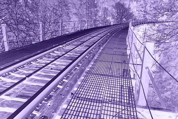 Salmonberry Rail Line