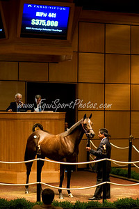 Hip441-ExchangeRate-WickedlyWise_esp-4