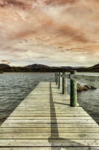 Pond Boardwalk