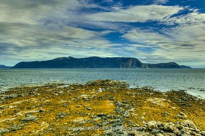 Woody Cove Reef