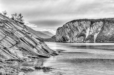 Grey at Gros Morne