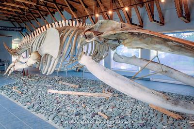A Giants Bones