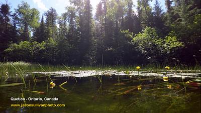 Canoeing Quetico in Ontario