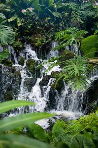 Singapore Botanic Gardens, Orchid Garden - waterfall