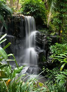 Mt. Coot-tha Botanic Gardens, Brisbane - waterfall