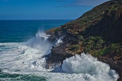Kilauea Point, Kauai